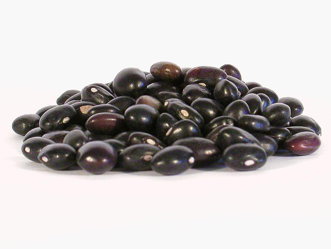 How to Cook Black Beans in Santa Fe | Beneficial Farms CSA