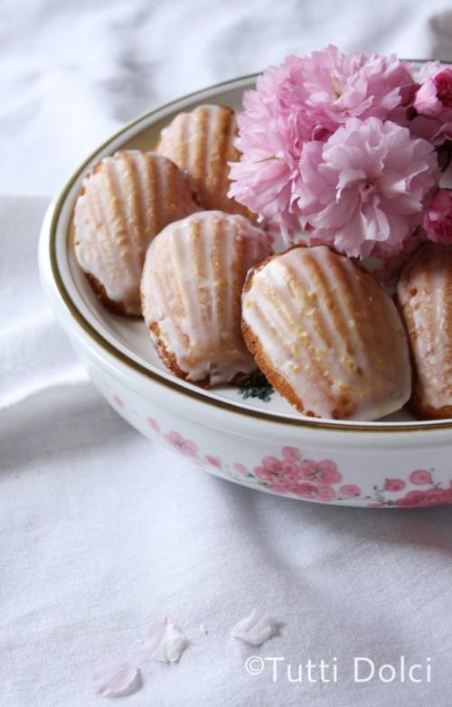 meyer-lemon-madeleines-2-copy1-654x1024