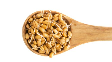 sprouted-wheat-grains-small-water-for-health-450x250